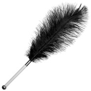 Black Ostrich Feather Tickler